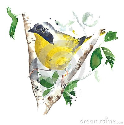Free Bird Watercolor Painting Illustration Isolated On White Background Stock Images - 89105464