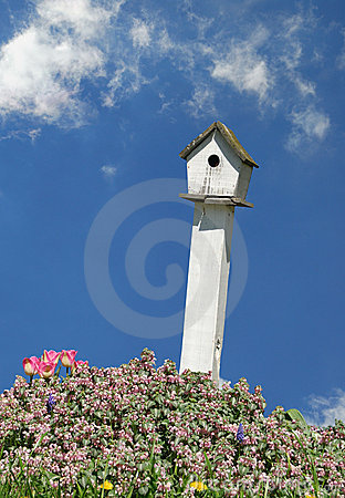 Free Birdhouse Royalty Free Stock Image - 4855246