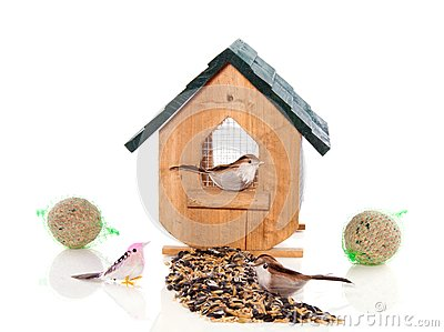 A birdhouse with birds and seeds