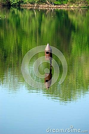 Birdhouse na água