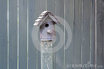Birdhouse by Wooden Fence