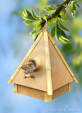 Free Birdie And Birdhouse Stock Image - 19609711