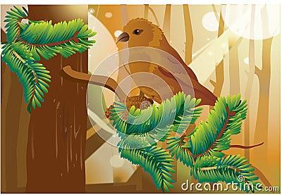 A birdie in forest