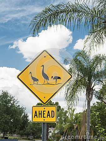 Birds AheadCaution Sign