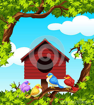 Free Birds And Bird House On The Tree Stock Image - 59751381