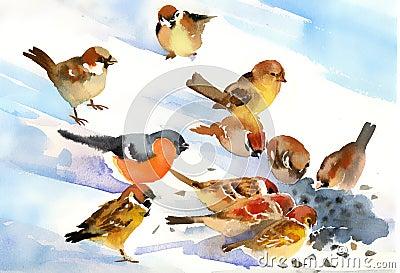 Birds eat