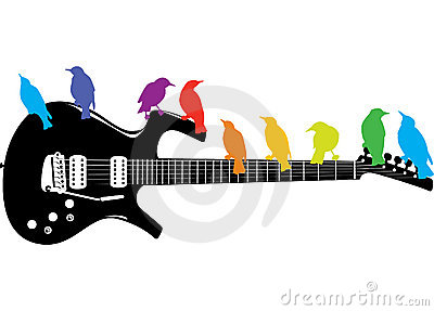 Birds on a guitar