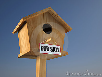 Birds house for sale
