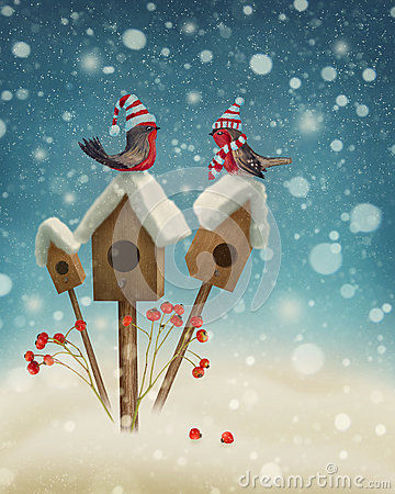 Free Birds In Winter Royalty Free Stock Images - 47527599