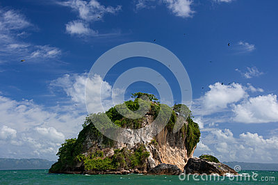 Birds Island, Los Haitises National Park
