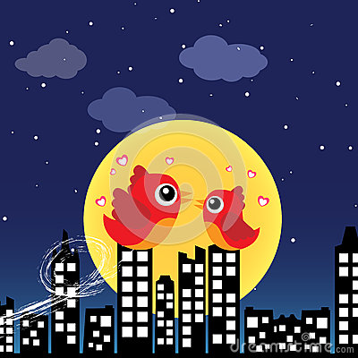 Birds in love at night