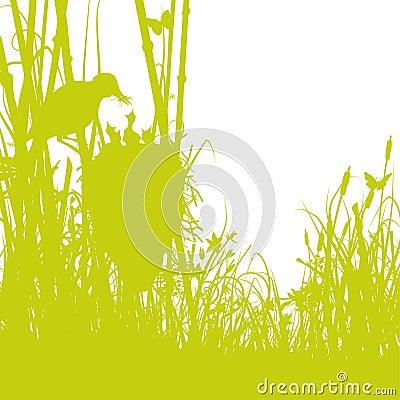 Birds nest in the reeds