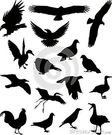 Birds silhouette 1 (+ vector)