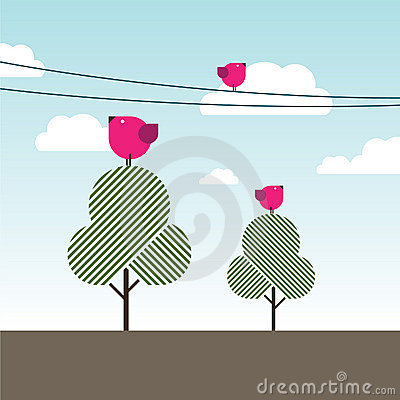 Birds singing on trees and powerlines