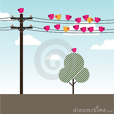 Free Birds Sitting And Singing On Powerlines Stock Photo - 13013090