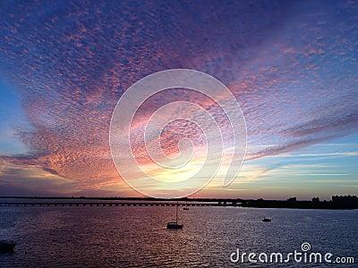 Birds In the Sky Sunset