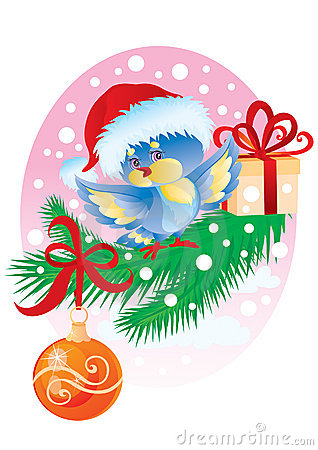 Birdy with a gift