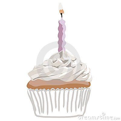 Birthady cupcake pink vector