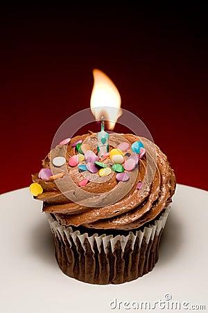 Free Birthday Cupcake II Stock Photo - 890100
