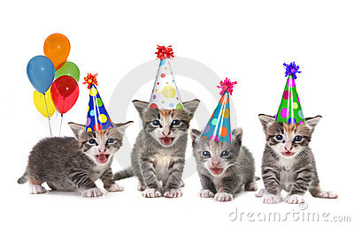 Birthday Song Singing Kittens on White Background