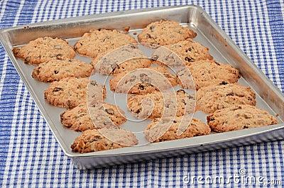 Biscuits cuits au four chauds