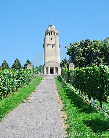 Bismarck Tower in the middle of vineyard.