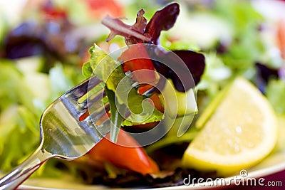 Bite of Salad on Fork