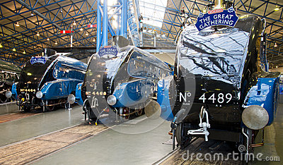Bittern, Mallard and Dominium of Canada at York Railway Museum Editorial Stock Photo