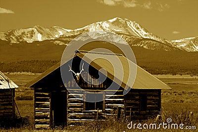 Bitterroot Mountains Montana