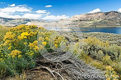 Bizarre Mountain Lake Landscape