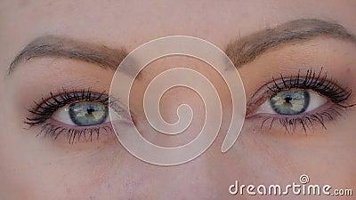 Blå ögon nära lager videofilmer