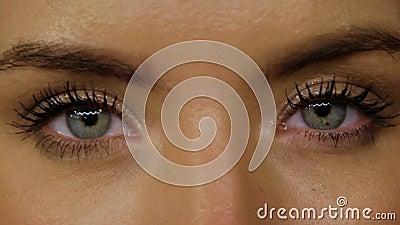 Blå ögon och guldmakrill stock video