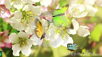Blühende Blumen und Schmetterlinge,