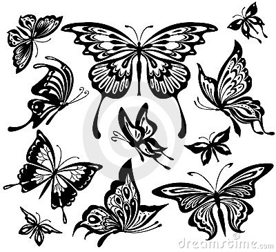 Free Black And White Butterflies Royalty Free Stock Photography - 14554087