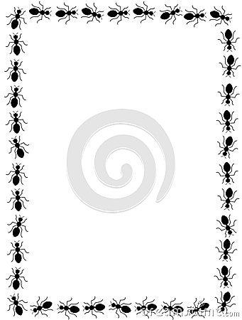 Black ants border / frame