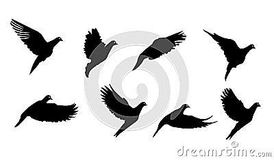 Dessin Oiseau Simple Qui Vole