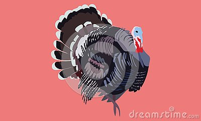 Black brown grey blue red cute turkey art Stock Photo