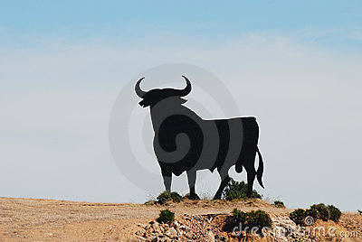 Black bull in spanish landscape