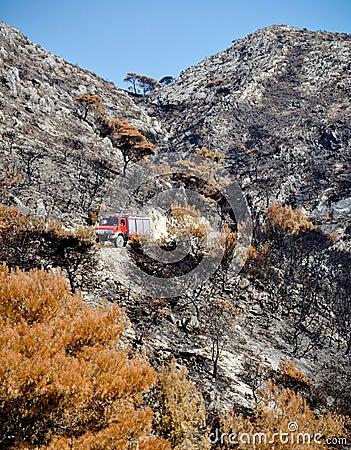 Black burnt land, fire engine and blue sky