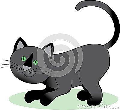 Black Cat Crouching