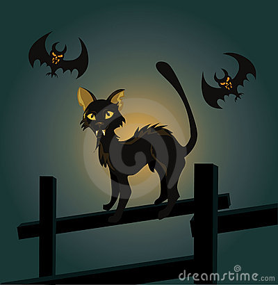 Black cat on a fence and a vampire bat