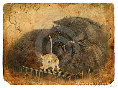 Black cat and gerbil. Old postcard.
