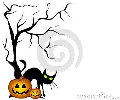 Black Cat Halloween Pumpkins