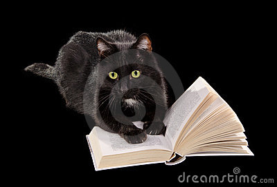 Black cat reading book on black background