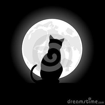 Free Black Cat Sitting Opposite To The Moon In Night Of The Halloween Stock Photos - 44478923