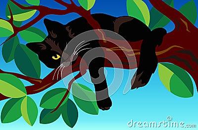 Black cat on a tree.