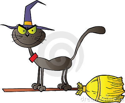 Black cat which fly a broom