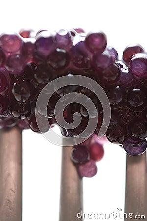Free Black Caviar Stock Images - 5493084