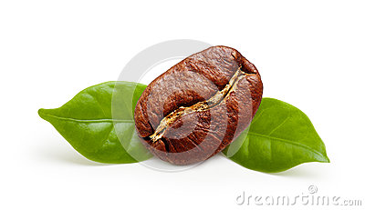 Black coffee bean, grain with leaf