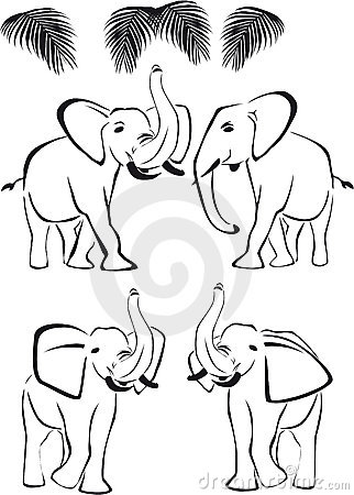 Black elephant, trunk up and down, wild animals